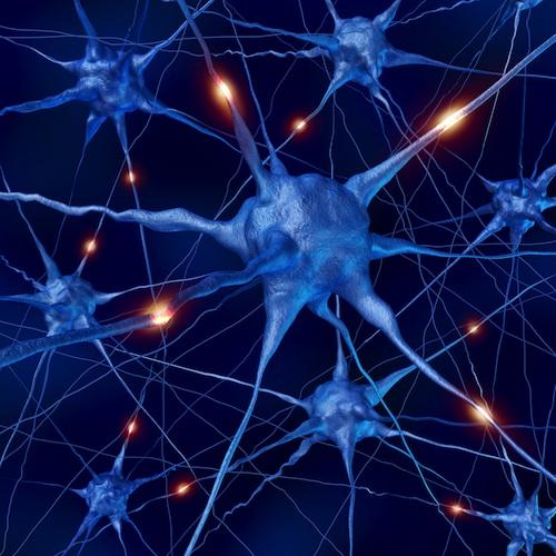 La Sfida Delle Staminali Contro Il Parkinson